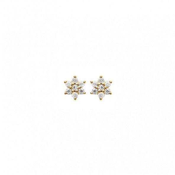 Earrings Zirconium Flower Gold Plated